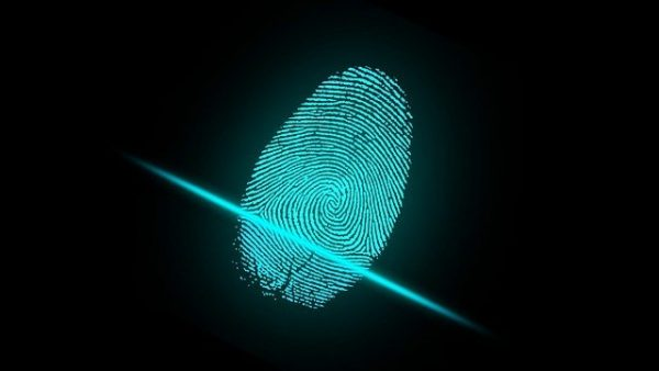 Top Mistakes That Make You A Prime Target For Identity Theft